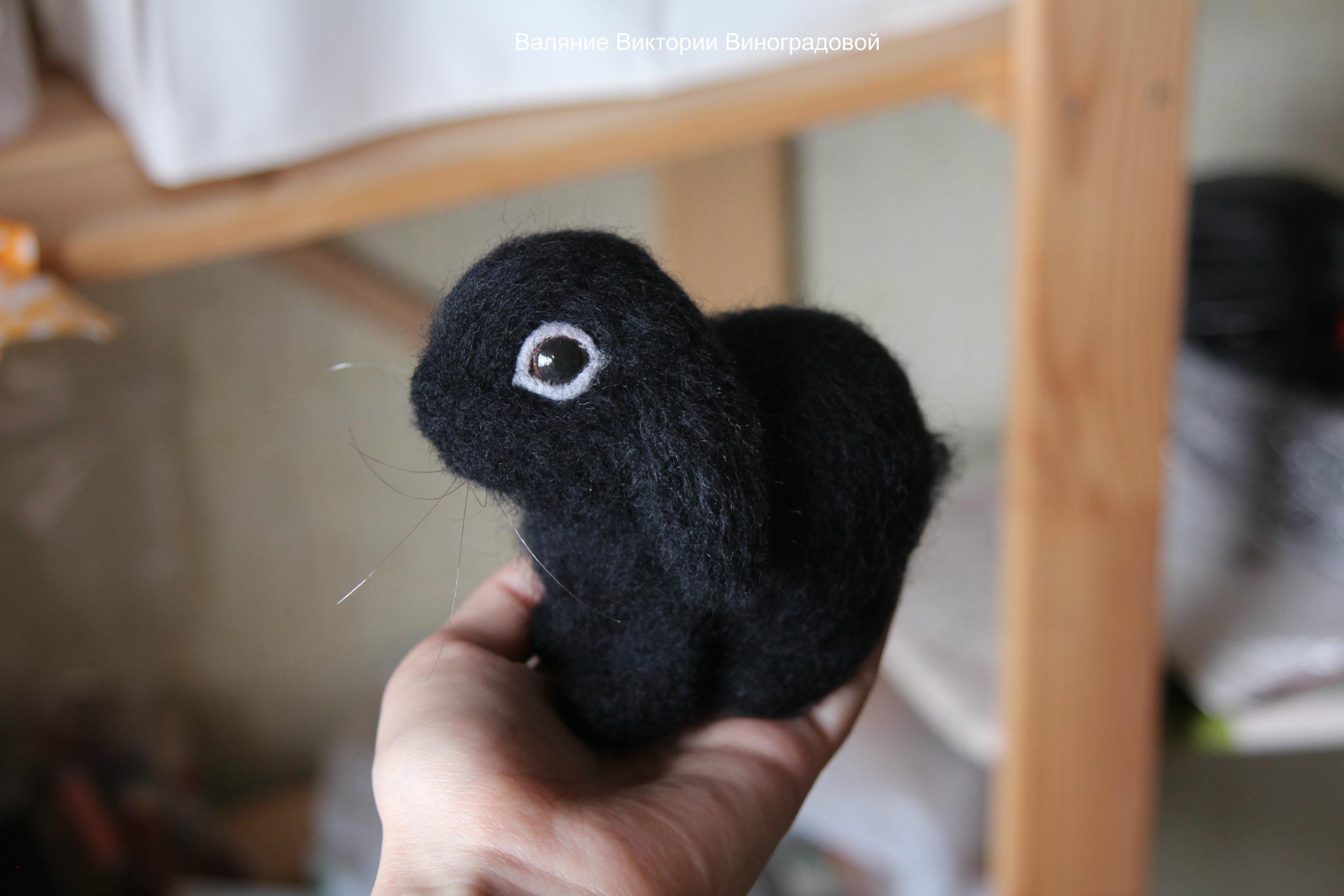 Кролик черный