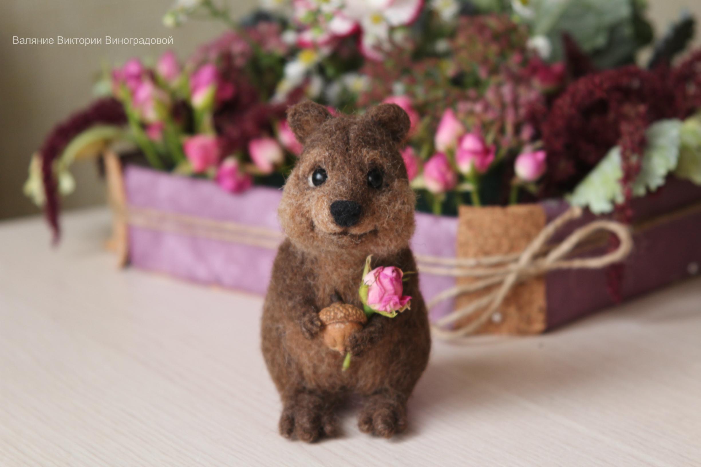 квокка с цветочком