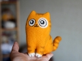 кот Персик пучеглазый