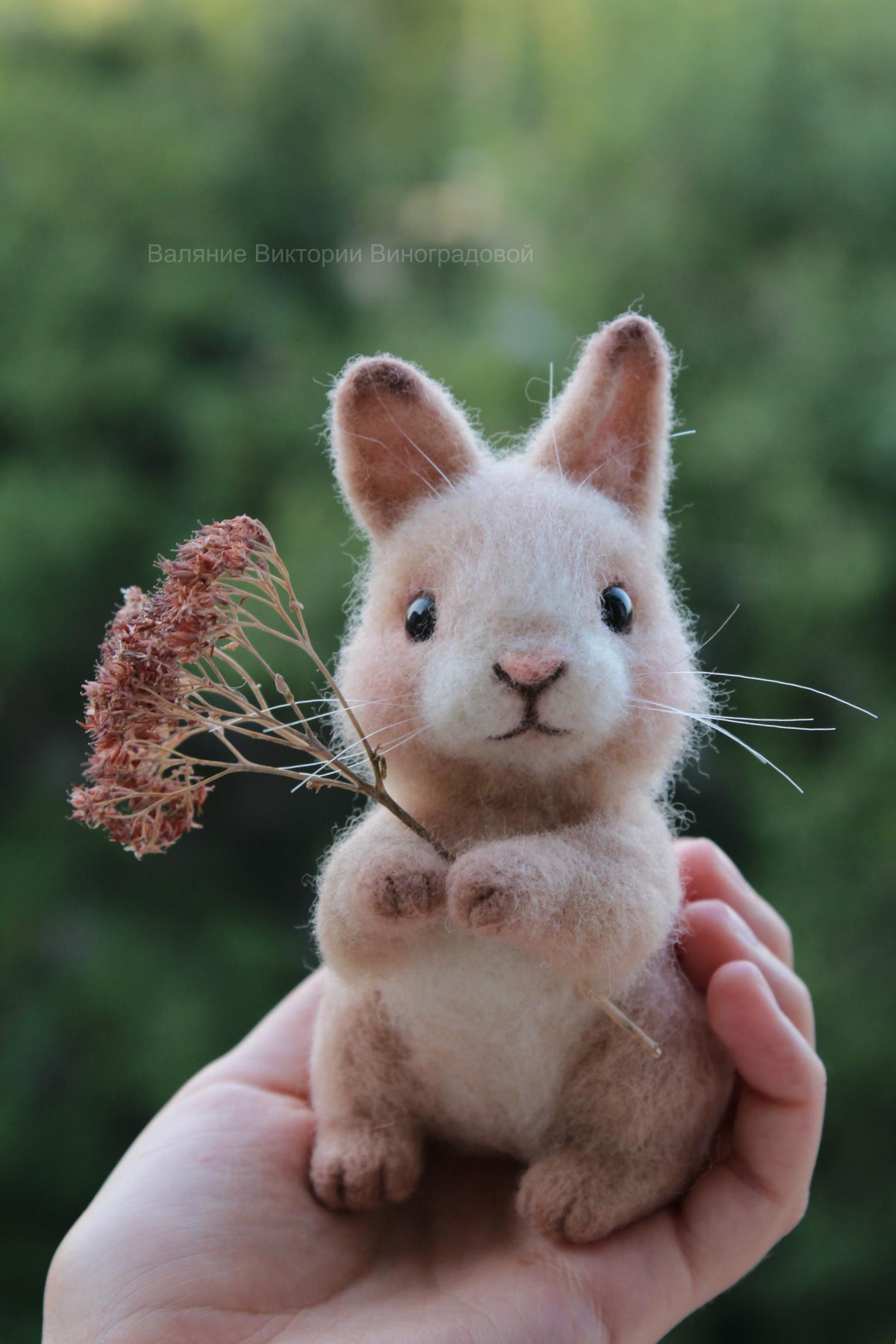 Кролик из шерсти