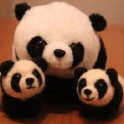 панды валяние воронеж