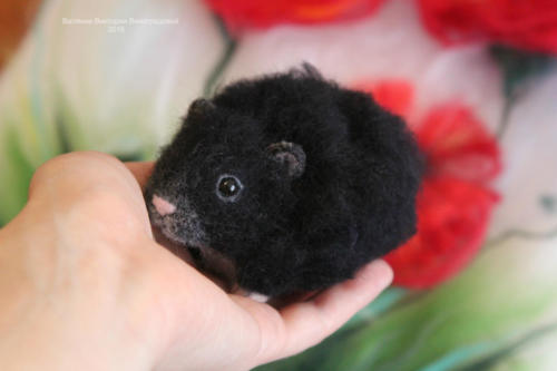 черный хомячок